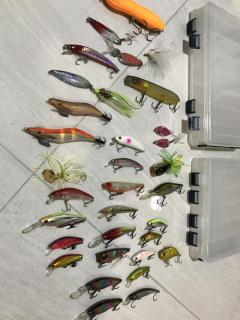 Lure Assorted