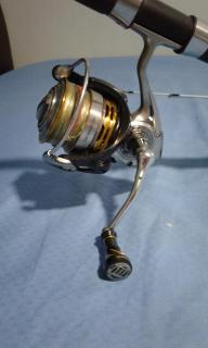 Daiwa EM MS 3012H with rod