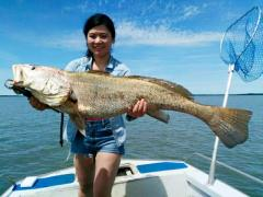 Fish Darwin - DARWIN HARBOUR FISHING CHARTERS