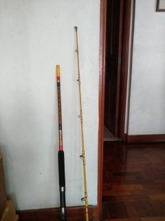 Eagle Claw spinning rod