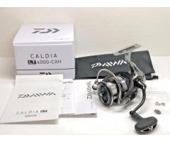 Daiwa Caldia LT4000-CXH