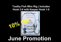 toothy Fish Wire Rig 3/0 and 1/0 hooks x Cast&Catch