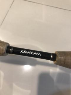 Daiwa casting rod (overhead Bc)