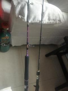 Jigging rod