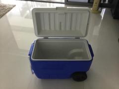 Coleman cooler box 52 litre