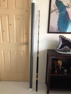 Berkley Big Game fishing rod