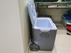 Cooler box, Rubbermaid 65L