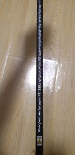 Wts centaur jigging rod blue heaven spinning rod and stradic FL reel, bone rod