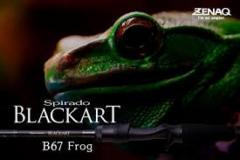 wtb Zenaq Blackart B67 Frog