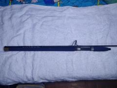 Custom Pe2-4 Jigging Rod