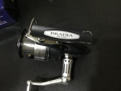 Bradia 3500