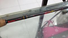 Berkley lightning Casting Rod for Grab