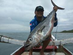 Fishing in Lombok and Sumbawa Indonesia