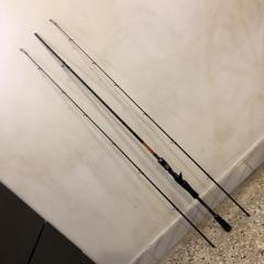 Fishing rod with 2 changeable tip