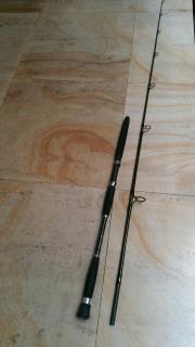 Daiwa Monster Mesh 832 popping rod