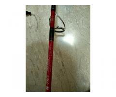 Valiant sw5000 & EUPRO hammer II jig rod