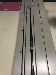 Team daiwa spinning rod
