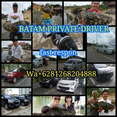 Batam tours and private Driver