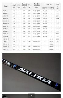 Saltiga jigging rod