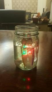 LED Jigs