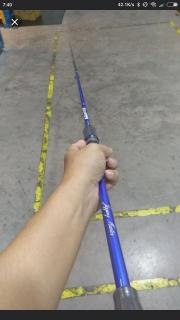 Jigging master eging rod