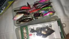 Bfs lures