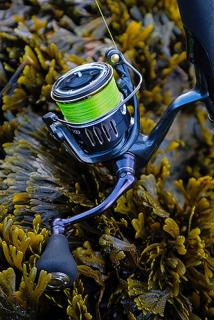 WTB: Shimano Twin Power XD and SW