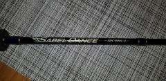 SABEL DANCE Light Jigging Fishing Rod