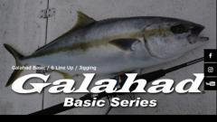Want to buy Yamaga Blanks Galahad 59/1