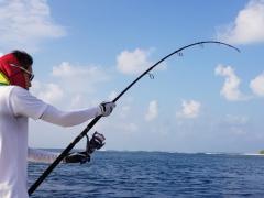 WTB: Yamaga Blanks 75/4 casting rod