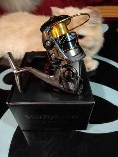 Vanquish C3000HG + Yumeya knob