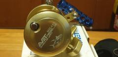 Avet MXL Gold