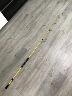 Custom made Spinning fishing rod